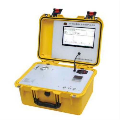 便携式全自动煤气组分分析气相色谱仪